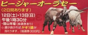 ヒージャーオーラセーX60
